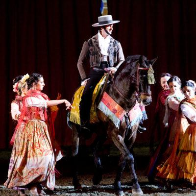 2010_spettacolo_1_i_cavalli_di_roma_17