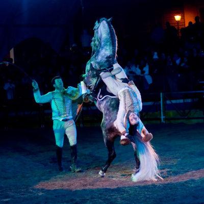 2010_spettacolo_1_i_cavalli_di_roma_3
