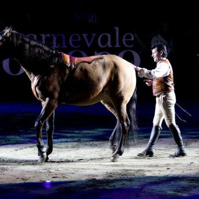 2010_spettacolo_1_i_cavalli_di_roma_8