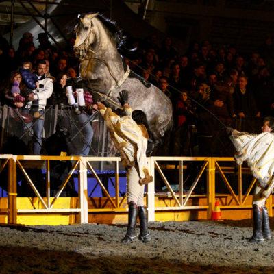 2010_spettacolo_2_i_cavalli_di_roma_24