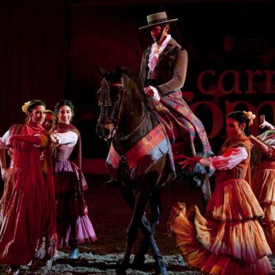 2010_spettacolo_2_i_cavalli_di_roma_3