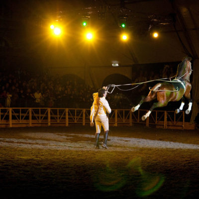 2010_spettacolo_2_i_cavalli_di_roma_37