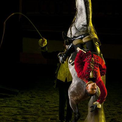 2011_spettacolo_i_cavalli_di_roma_104