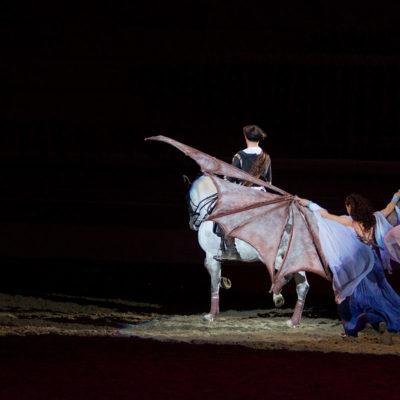 2011_spettacolo_i_cavalli_di_roma_13