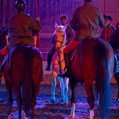 2011_spettacolo_i_cavalli_di_roma_16