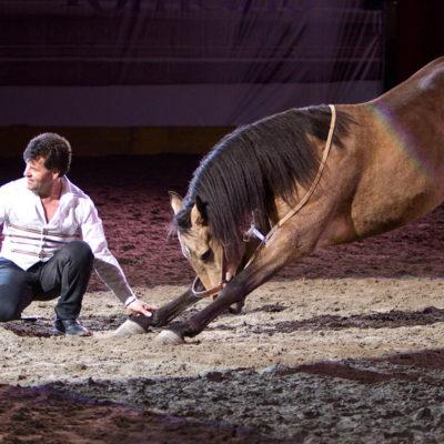 2011_spettacolo_i_cavalli_di_roma_2