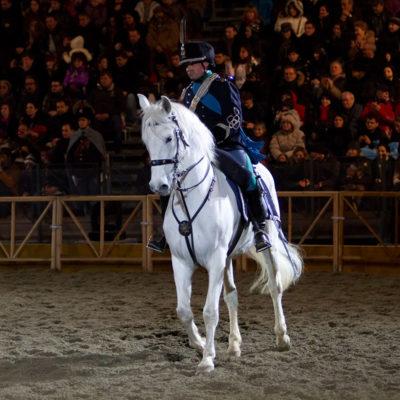 2011_spettacolo_i_cavalli_di_roma_35