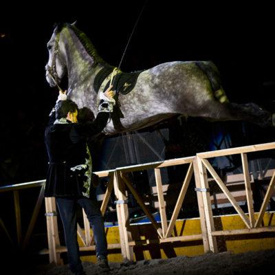 2011_spettacolo_i_cavalli_di_roma_46