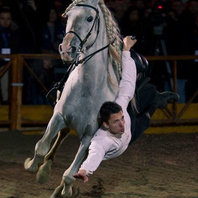 2011_spettacolo_i_cavalli_di_roma_54