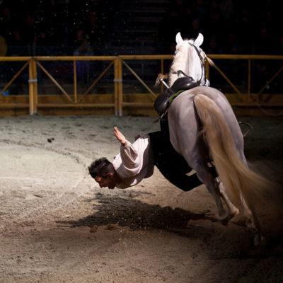 2011_spettacolo_i_cavalli_di_roma_55