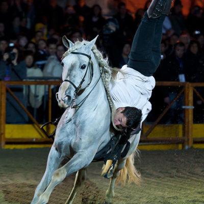 2011_spettacolo_i_cavalli_di_roma_56