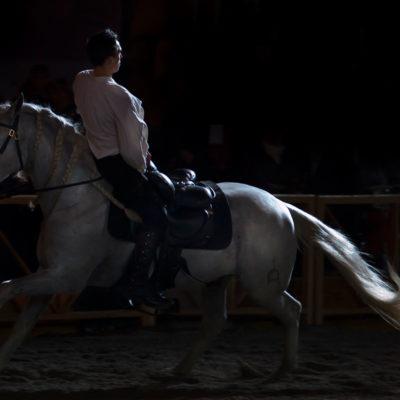 2011_spettacolo_i_cavalli_di_roma_59