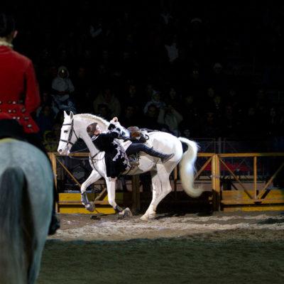 2011_spettacolo_i_cavalli_di_roma_82