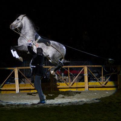 2011_spettacolo_i_cavalli_di_roma_83