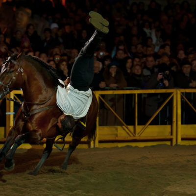 2011_spettacolo_i_cavalli_di_roma_89