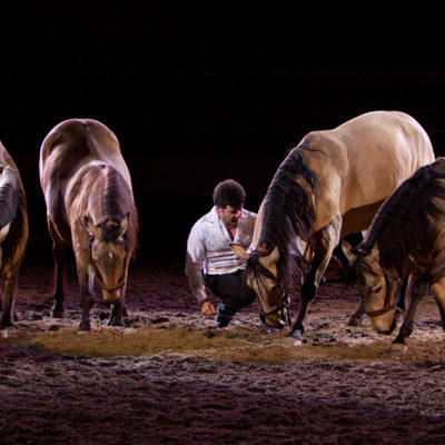 2011_spettacolo_i_cavalli_di_roma_9