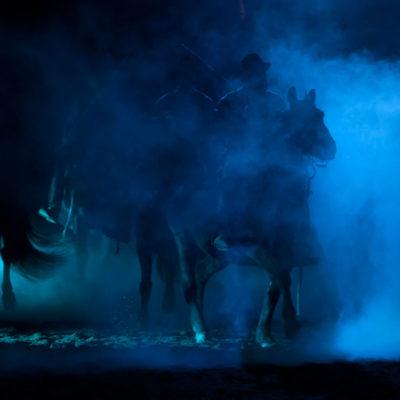 2011_spettacolo_i_cavalli_di_roma_94