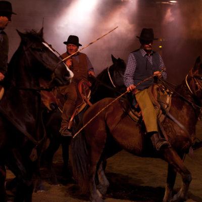 2011_spettacolo_i_cavalli_di_roma_97