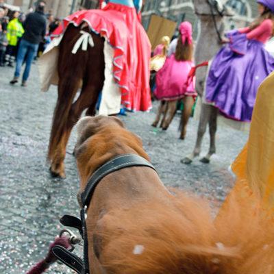 2012_sfilata_pony_24