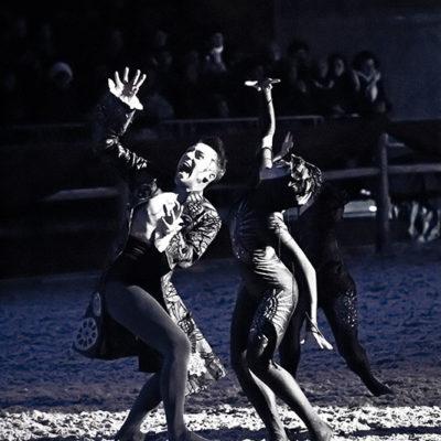 2012_spettacolo_i_cavalli_di_roma_1