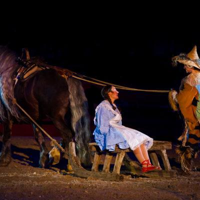 2012_spettacolo_i_cavalli_di_roma_118