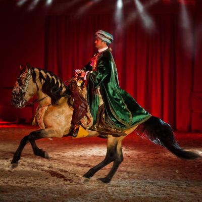 2012_spettacolo_i_cavalli_di_roma_119