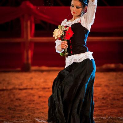 2012_spettacolo_i_cavalli_di_roma_125