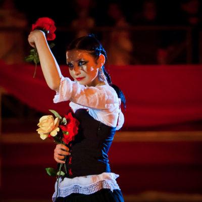 2012_spettacolo_i_cavalli_di_roma_126