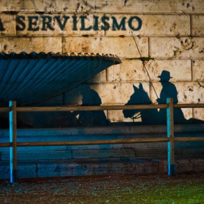 2012_spettacolo_i_cavalli_di_roma_130