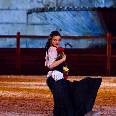 2012_spettacolo_i_cavalli_di_roma_157