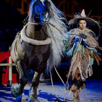 2012_spettacolo_i_cavalli_di_roma_169