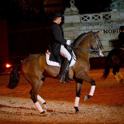 2012_spettacolo_i_cavalli_di_roma_171
