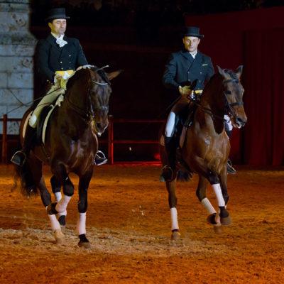 2012_spettacolo_i_cavalli_di_roma_172