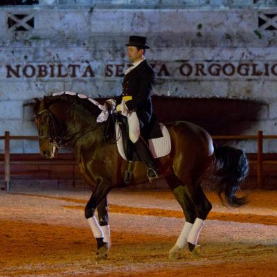 2012_spettacolo_i_cavalli_di_roma_177