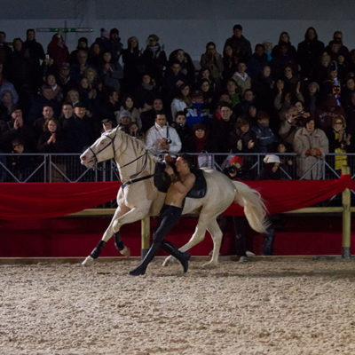 2012_spettacolo_i_cavalli_di_roma_19