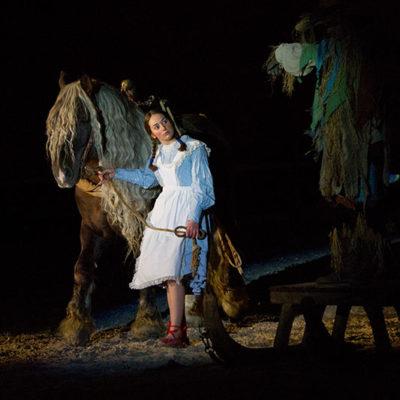 2012_spettacolo_i_cavalli_di_roma_20