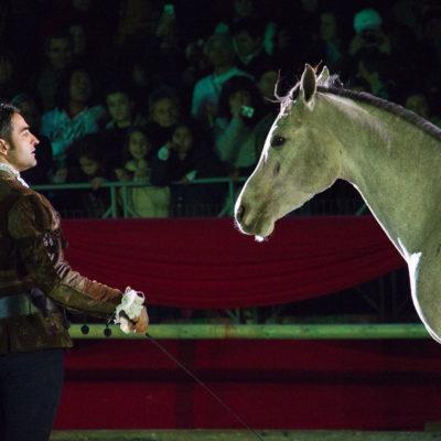 2012_spettacolo_i_cavalli_di_roma_214