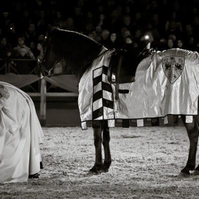 2012_spettacolo_i_cavalli_di_roma_232