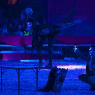 2012_spettacolo_i_cavalli_di_roma_235