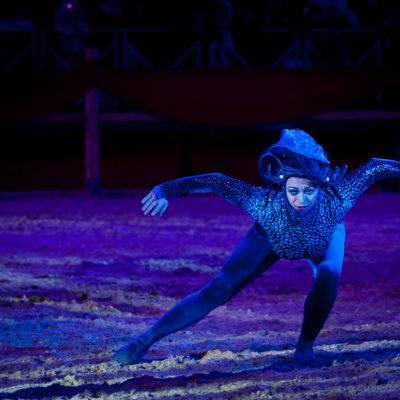 2012_spettacolo_i_cavalli_di_roma_236