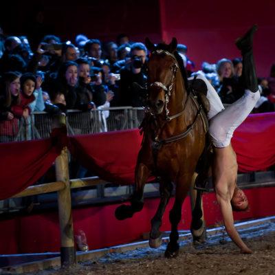 2012_spettacolo_i_cavalli_di_roma_246