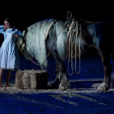2012_spettacolo_i_cavalli_di_roma_248
