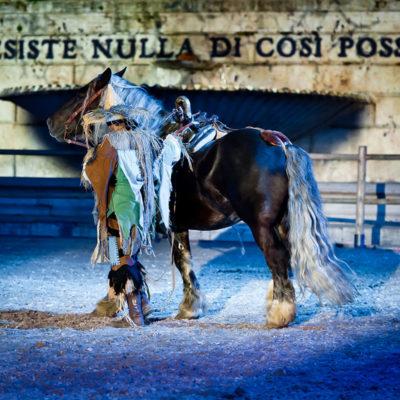 2012_spettacolo_i_cavalli_di_roma_249
