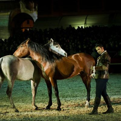 2012_spettacolo_i_cavalli_di_roma_254