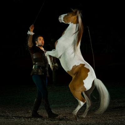 2012_spettacolo_i_cavalli_di_roma_255