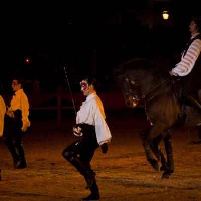 2012_spettacolo_i_cavalli_di_roma_258