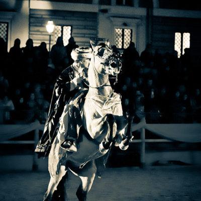 2012_spettacolo_i_cavalli_di_roma_26