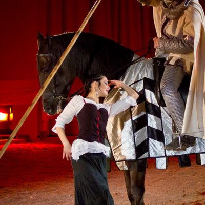 2012_spettacolo_i_cavalli_di_roma_27