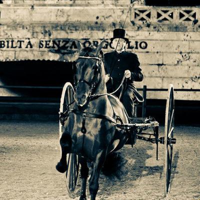 2012_spettacolo_i_cavalli_di_roma_28