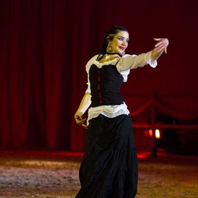 2012_spettacolo_i_cavalli_di_roma_281